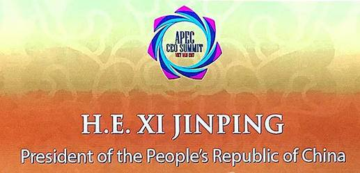 汉今国际总裁刘绱出席APEC第二十五次领导人非正式会议